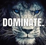 Dominate, Lion, Freak of Nature Fitness, Bible, Jesus, Persevere, 2 Corinthians 4, Win