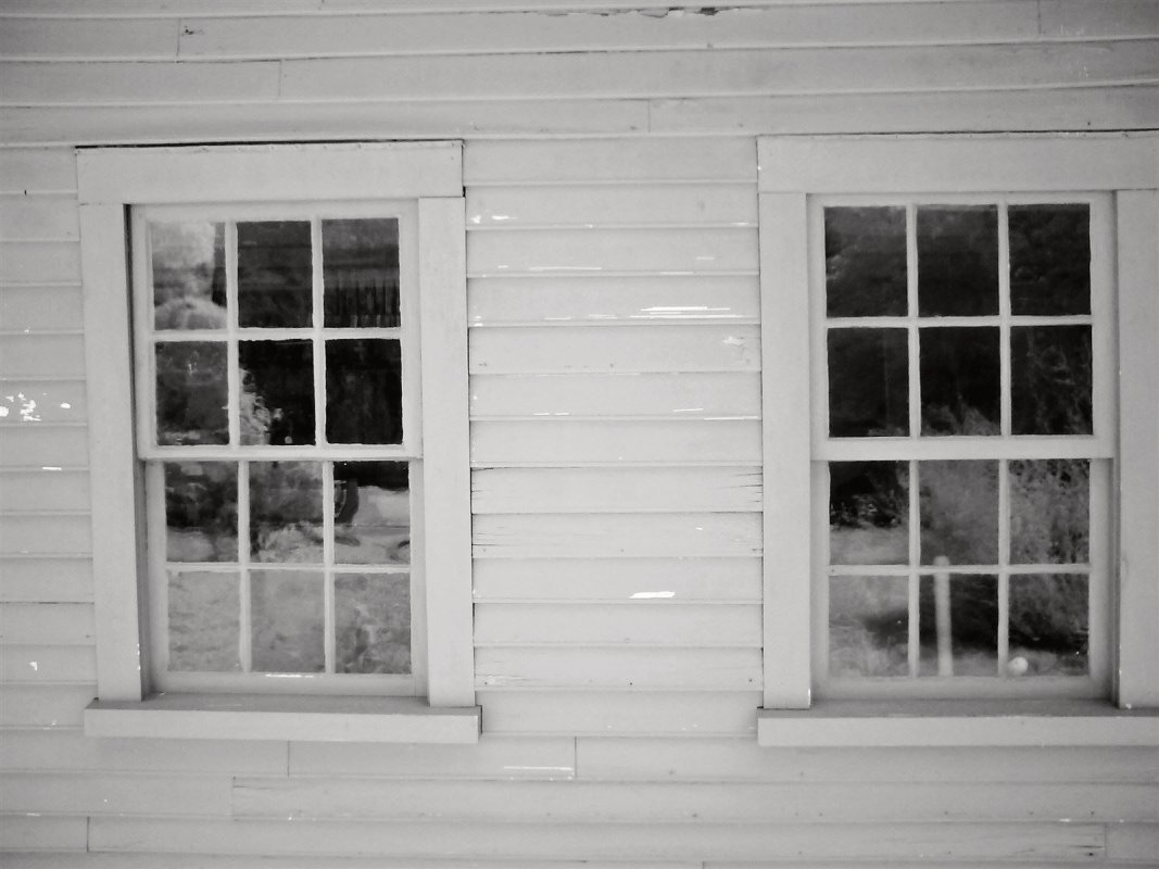 Rear Kitchen Windows (Deep Infrared)