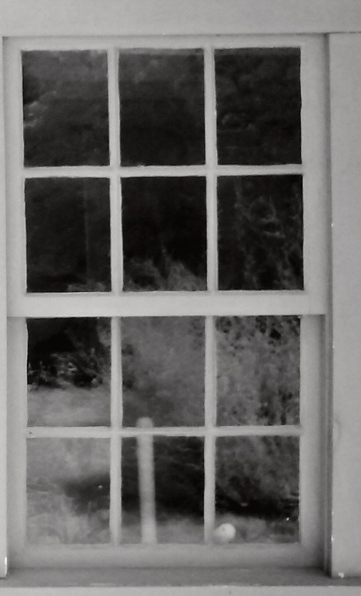 Enlargement: Right Kitchen Window (Deep Infrared)