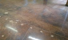 polished concrete 531 S Pineapple Sarasota FL